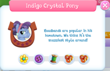 Indigo Crystal Pony Album Description