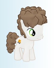 Poofymane school pony