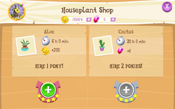 Houseplant Shop Products