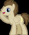 Crescent Pony.png