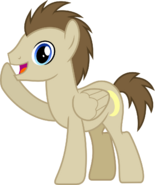 Crescent Pony