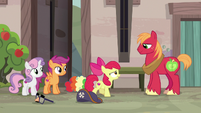 Apple Bloom approaching Big McIntosh S7E8