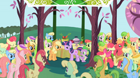 Apple family gathered around sighing Twilight S1E1