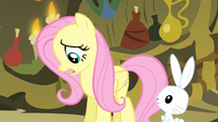 Fluttershy 'Except that' S4E14