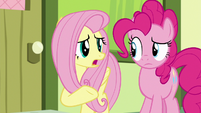 Fluttershy -never seen Apple Bloom and Scootaloo argue- S8E12