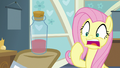 Fluttershy gasps in horror at the red water S7E20.png