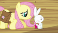 Fluttershy trying to make Angel happy S03E11.png