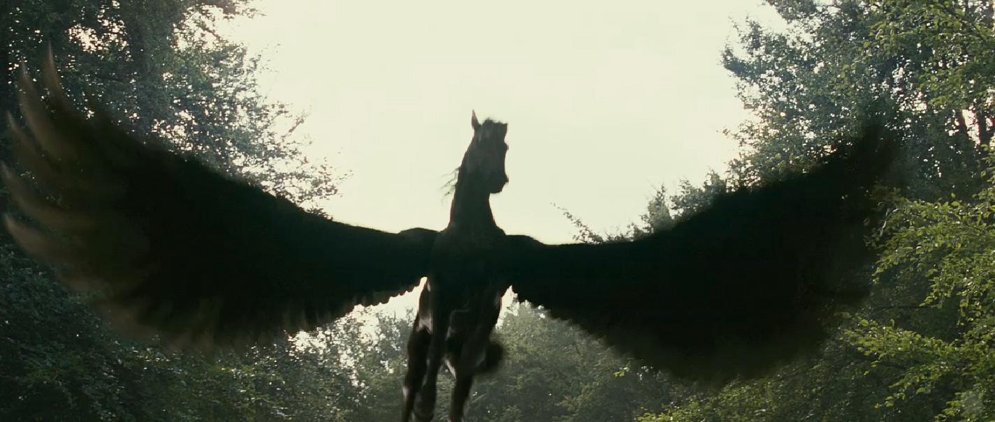 image pegasus jpg my little pony friendship is magic wiki