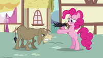 "Pinkie Pie and Cranky ""I can fix this!"" S02E18"