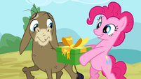 Pinkie Pie promise S2E18