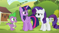 Rarity --refused to relax until she had fixed them-- S6E10