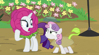 Rarity shocked by Sweetie Belle's outburst S7E6
