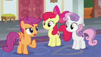 "Scootaloo ""we belong in this school!"" S8E12"