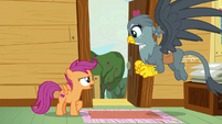 Scootaloo --we're gonna do everything we can-- S6E19