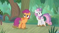 Scootaloo and Sweetie look for Apple Bloom S9E22