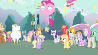 Townsponies congratulating Rarity S4E13