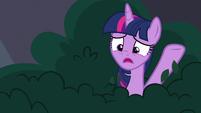 """Twilight """"proper book borrowing behavior"""" S9E5"""