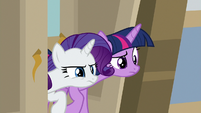 Twilight and Rarity peek into the university S8E16
