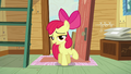 Apple Bloom being coy S5E4.png