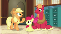 Applejack -now's as good a time as any- S7E13