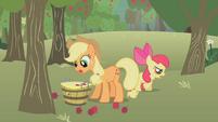 Applejack pegando maçãs T1E12