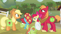 Applejack talking with her family S4E09.png
