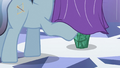 Crystal stallion trying to look under curtain S3E2.png