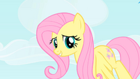 Fluttershy looks down at Pinkie Pie S1E25