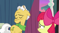 Grand Pear looks away from Apple Bloom S7E13