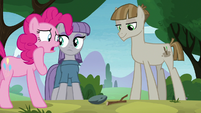 "Pinkie Pie ""it's just a stick"" S8E3"