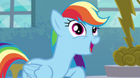 Rainbow Dash --I like to tell it like it is-- S6E7