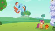 S06E14 Rainbow wynosi skrzydła