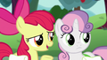 "Apple Bloom ""Scoot and Rainbow Dash'll take that award"" S6E14.png"