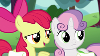 "Apple Bloom ""Scoot and Rainbow Dash'll take that award"" S6E14"