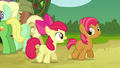 Apple Bloom 'I can't wait to hear all about it!' S3E08.png