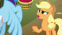 "Applejack ""when did you ride it?"" S8E5"