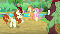 "Autumn Blaze ""you were saying?"" S8E23"