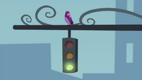 Bird perched on a traffic light EG2