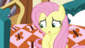 """Fluttershy """"oh, no"""" S5E21.png"""