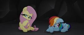 Fluttershy and Rainbow Dash looking sad MLPTM