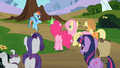 Main ponies with their pets S2E7.png