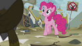 "Pinkie ""how about a party?"" S5E8.png"