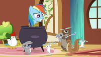 Rainbow Dash and cannibalistic animals S03E13
