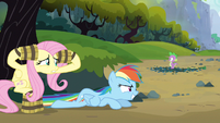 Rainbow Dash working well S3E9