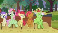 S03E08 Kucyki siedzą na wozie z sianem 2