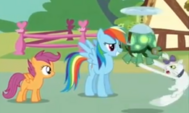 Scootaloo rainbow dash tank y opal