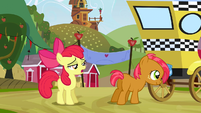 Apple Bloom -I mean obviously- S3E8