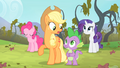 Applejack 'Only one way to find out for sure' S4E07.png