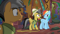 Daring Do scolding Rainbow Dash S6E13.png