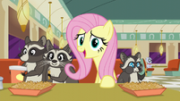Fluttershy --Then Smoky Jr. found a nice home in the crawl space-- S6E9